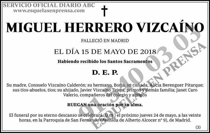 Miguel Herrero Vizcaíno